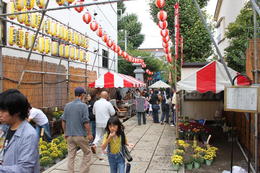Yanaka Chrysanthemum Festival (1)