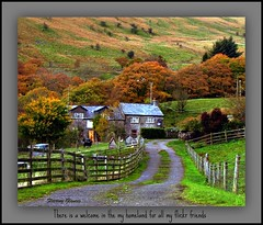 558. There is a welcome ....... (fleetingglances) Tags: autumn mountains green grass wales farmhouse stream song hills land remote welsh welcome homeland valleys