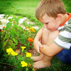 Through the Eyes of a Child (Little Laddie) Tags: flowers boy butterfly garden child monarch onlythebestare