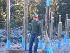 The footings (mithracox) Tags: morning cold building ice shack poles footings wombeyan