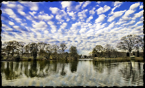 Cotton sky at piedmont park