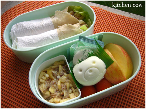 Adobo Salad Wraps Bento