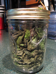 dried_basil_jar_7_2007