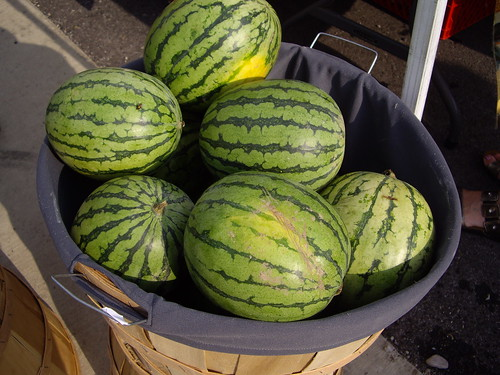 080407melons