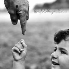 Encuentro (Siscafoto) Tags: life portrait baby cute blancoynegro kids canon hands child mani nios nio detalles bianconero emozioni monart bwemotions canoneos30d ritrattidiof niosydetalles espressionidellanima byfotosiscaallrightsreserved siscafotogmailcom