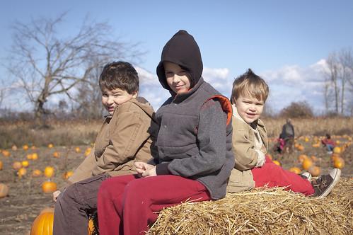Pumpkin picking 2010-2