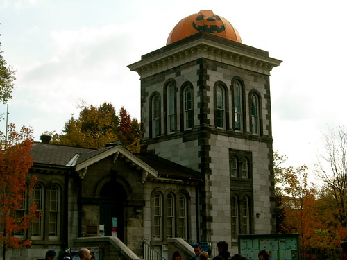 University of Toronto dresses for Halloween