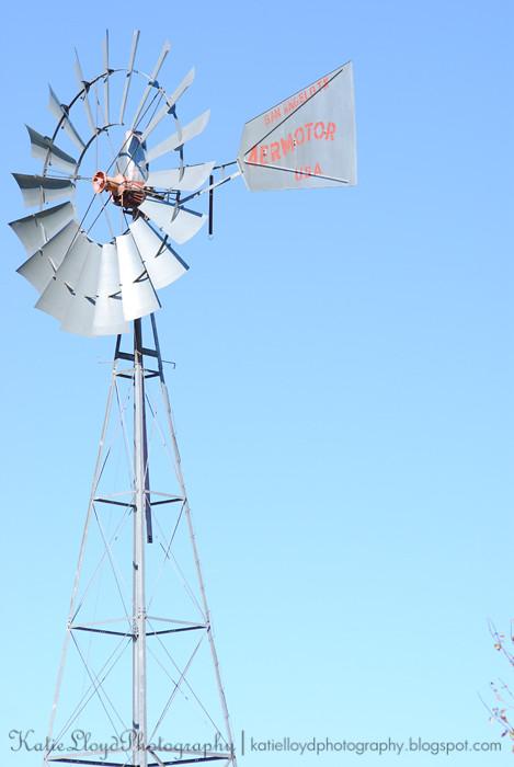 Windmill-sooc