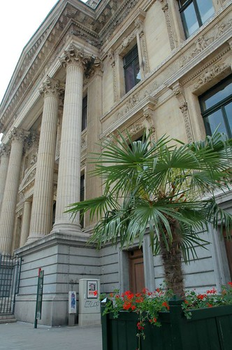 Palmbomen achter de beurs