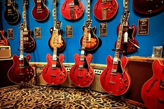 Gibson ES335 (Lidia Camacho) Tags: blue red music newyork electric wall cherry guitars rug strings gibson amps amplifiers es335 animalprint guitarcenter freet copyrightedallrightsreserved