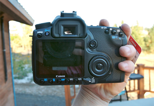 Canon 40D Back