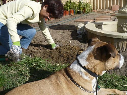 mom-snoop-garden2