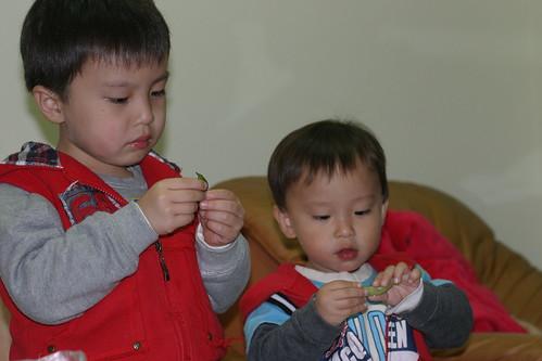 你拍攝的 沒人可打擾的吃毛豆兄弟。