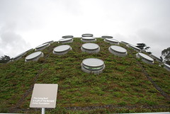 Top of the Academy of Science