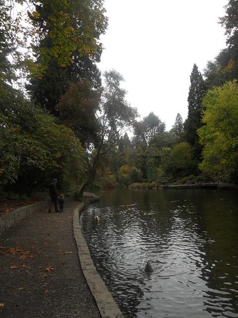 fall2010 025