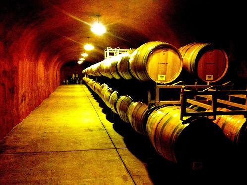 wine cave.