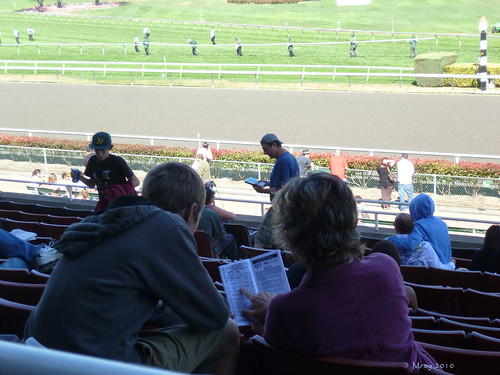 golden gate fields 061