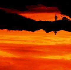 Vole (mmarsupilami) Tags: bigmomma supershot outstandingshots challengeyouwinner mywinners abigfave defidefiouiner colorphotoaward superaplus aplusphoto ltytr1 beyondexcellence goldenphotographer bonweekend superhearts bestofr