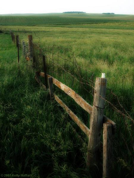 Fence at the Old Farm Place
