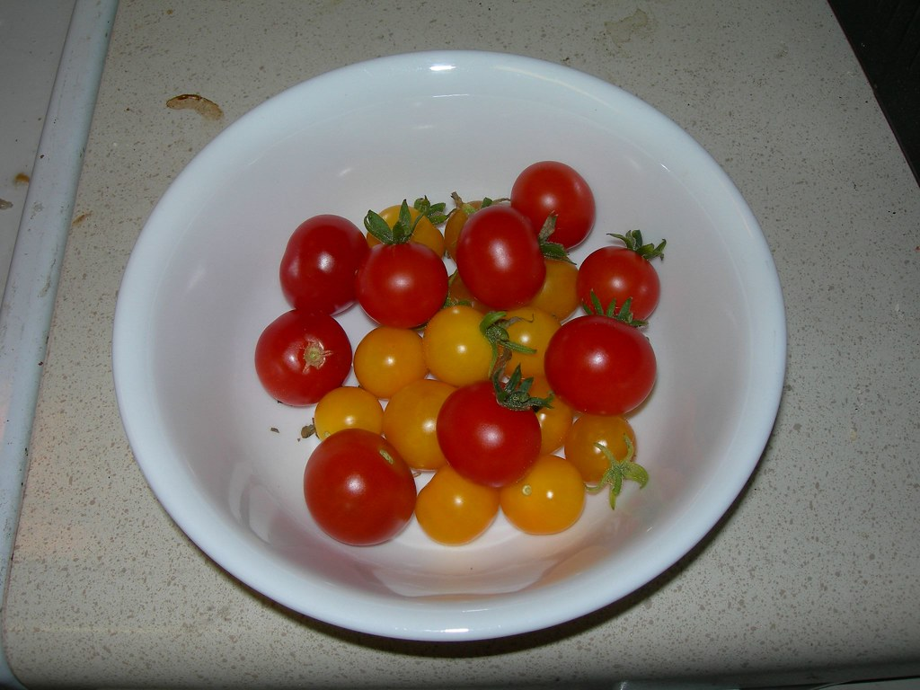 2007-08-11 Bowl of Tomatoes (1)