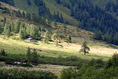 A mountain pasture (rotraud_71) Tags: trees alps forest landscape austria europe shed meadows shrubs brooks naturesbest salzburgerland kolmsaigurn amazingphotos nationalparkhohetauern raurisertal theunforgettablepictures horsesandcows