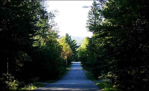 Nature-road