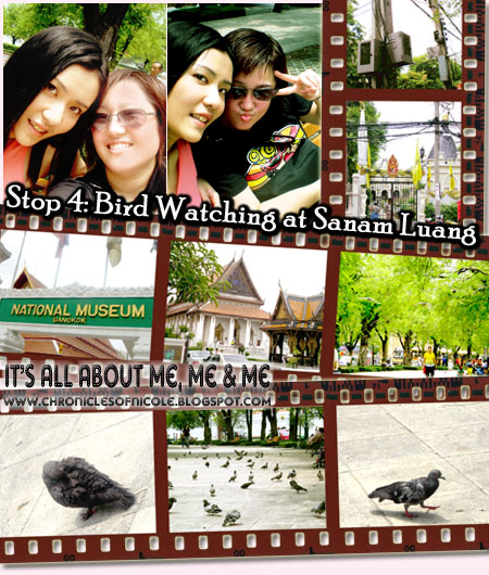 bird watching at sanamluang