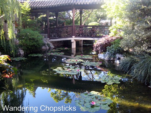 Day 4.12 Lan Su Chinese Garden (Portland Classical Chinese Garden) - Portland - Oregon 10