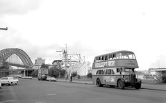 Department of Government Transport AEC Regent IIIs 2354 and 2509 and the P and O Steam Ship Orcades at Circular Quay West, Sydney, Australia.