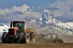 Idaho Farmer Plowing Field [Explored] (Daryl L. Hunter - The Hole Picture) Tags: tractor mountains idaho grandtetons agriculture plowing wheatfield agronomy tetonvalley farminggrandtetonsidahoidahoplowingtetonvalleytractorwheatunitedstatesof