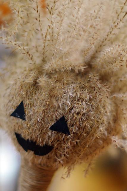 minami-otsuka-Halloween23