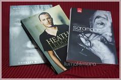 Desafio Literário 2011 - Fevereiro