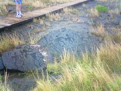 Nice lava flow markings