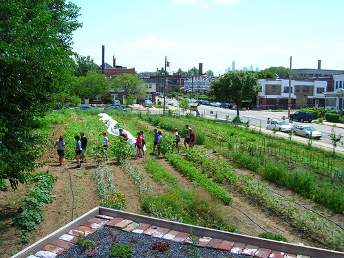 Urban Farm in Philadelphia