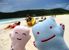 Bye from Culebra! (Spok-spok) Tags: sanfrancisco travel urban cute beach smile boston fun toy happy design robot cool soft sweden puertorico designer vinyl swedish plush softie lapland cuddly kawaii plushie giggling spok designertoy designerplush spoks dotdotdash spokspok