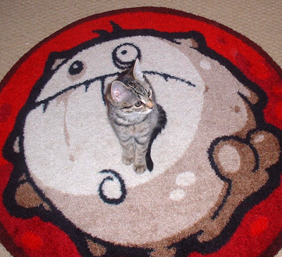 mouse on rug