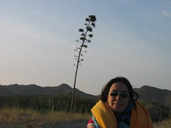 Cabo de Gata (40) (gablamur) Tags: de san playa entrada jos genoveses