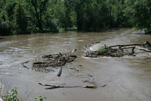 the brown water of a flooding river