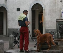 con il cane (MarinaMagri) Tags: italy dog cane stranger lombardia chiavenna sconosciuto santhubert