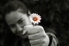 Che sia (FotoRita [Allstar maniac]) Tags: life bw italy white black rome flower roma colors smile digital portraits canon cutout hand mano daisy sorriso fiore myfavourites canoneos350d eos350d margherita byfotorita 123bw chesia