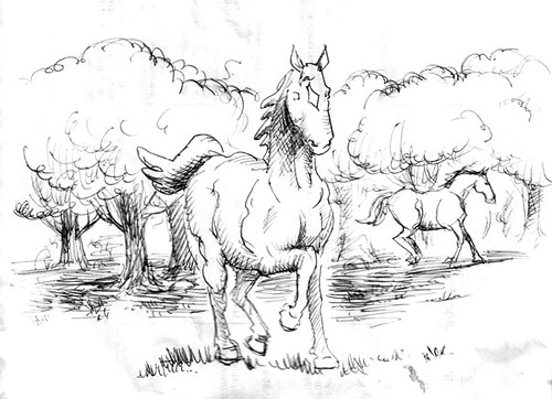 horsesketch