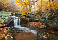 Reign of One (Michael Greene's Wild Moments) Tags: autumn fall water leaves yellow fog canon virginia waterfall hiking foliage backpacking va swirls wilderness shenandoah fineartphotography slowshutterspeed shenandoahnationalpark landscapephotography grandscenic wildmoments photocontesttnc10 fineartwildernessphotography