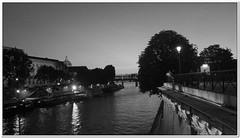 Une vue du pont neuf (Geoffroy65) Tags: city bridge blackandwhite bw black paris france water seine night river geotagged blackwhite nb casio ciel nuit laseine exz300