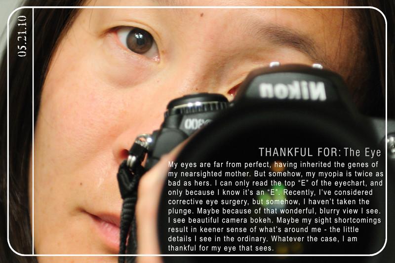 Weekly Gratitude - Eyes