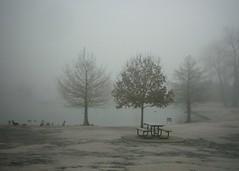 Winter Park v2