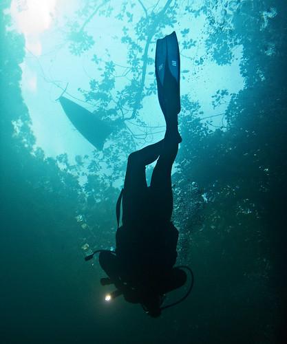 Cenote Angelita 09