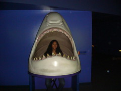 shark Mianna