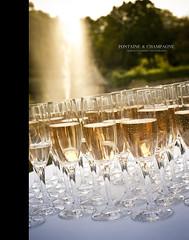 Fontaine & Champagne (Franck Tourneret) Tags: park sunset france fountain gardens 50mm nikon cut champagne bubbles flute reception fontaine parc coupe bulles jardins auvergne couchdesoleil puydedme rception d700 chanonat trasognoerealta chteaudelabatisse