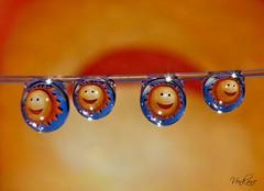 Nevena Uzurov - Hello Sunshine! (Nevena Uzurov) Tags: light color macro cute love water smile sunshine fun happy droplets waterdrop joy happiness drop smiley refraction droplet vojvodina   nevena  sremskamitrovica srem    javu  venkane    nevenauzurov