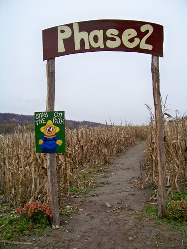 corn maize_entrance 2
